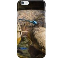 Dragonfly - Chichester  iPhone Case/Skin