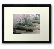 Desert Landscaping Framed Print