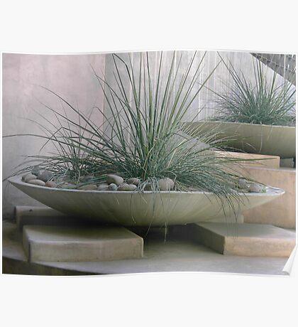 Desert Landscaping Poster