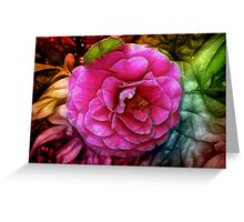 Hot pink silky rose flower Greeting Card