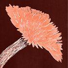 Flower of Orange by KazM