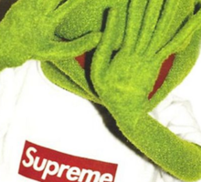 Kermit for Supreme Media Cases, Pillows, and More. Sticker