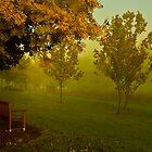 April mist by Rosalie Dale