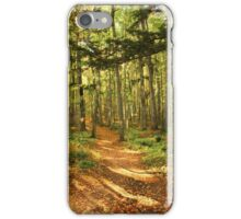 North Country Trail Fall 2014 iPhone Case/Skin