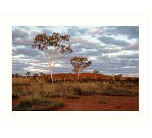Sunset Ghost Gums,Batton Hill, North Simpson Desert Art Print