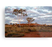 Sunset Ghost Gums,Batton Hill, North Simpson Desert Metal Print