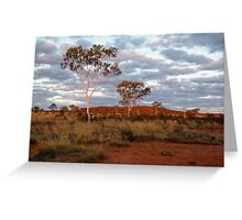 Sunset Ghost Gums,Batton Hill, North Simpson Desert Greeting Card