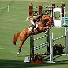 Showjumper - on the way up by Gino Iori
