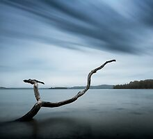 Holding on to life by Michael Howard