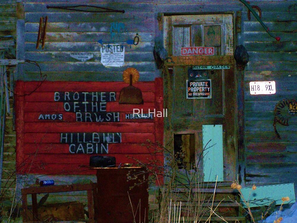Hillbilly Cabin by RLHall