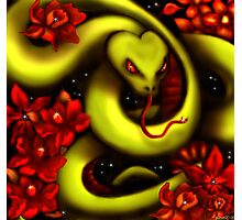 Star Slither Photographic Print