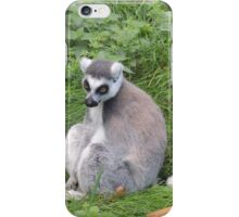 Has Anyone Seen My Tail? (I'm sure it was here a moment ago...) iPhone Case/Skin