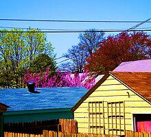 Neighborhood Skyline by hickerson