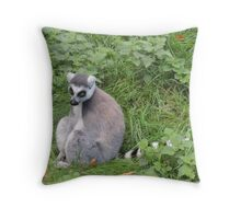 Has Anyone Seen My Tail? (I'm sure it was here a moment ago...) Throw Pillow