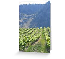 Early Summer Grapes. Greeting Card