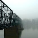 Walnut left in fog. by Jeff  Wiles