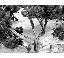Grand Canyon Vista No. 1 Photographic Print