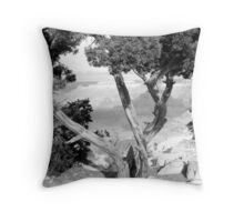 Grand Canyon Vista No. 1 Throw Pillow