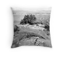 Grand Canyon Vista No. 2 Throw Pillow