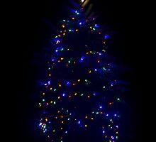 Liz's tree by RoyceRocks
