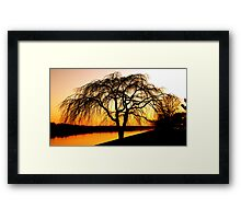 Serengeti in the city..     photographer: RCR Imagery, Creative aspects: J.Hall Framed Print