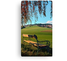 Bench under the tree | landscape photography Canvas Print