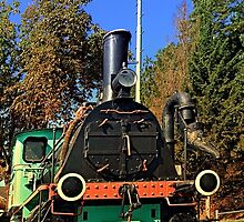 Historic steam train, abandoned   transportation photography by Patrick Jobst