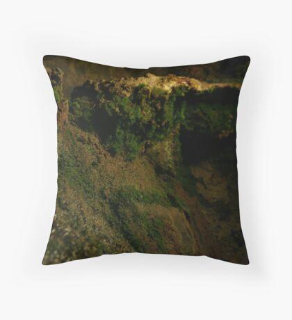 miniture cliff Throw Pillow