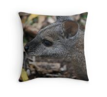 Wallaby  Throw Pillow