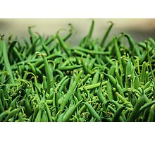 Sea of Green Beans Photographic Print
