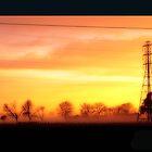 Misty Sunrise by Stephen Johns