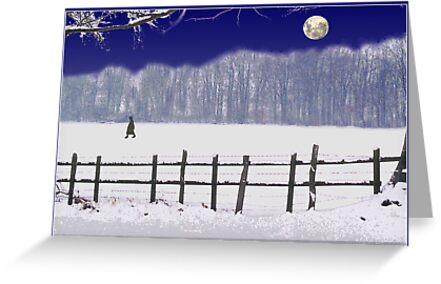 snow moon by carol brandt