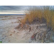 Fall Dunes Photographic Print