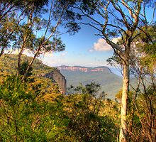 In The Distance - Blue Mountains HDR Series - Sydney Australia by Philip Johnson