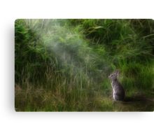 The Glade Canvas Print