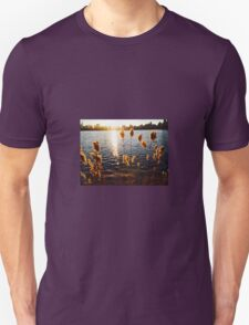 Central Park with New York City Skyline Unisex T-Shirt