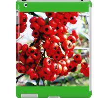 Berries 2 iPad Case/Skin