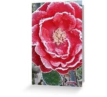 Red Rose - Icy Pedals Greeting Card