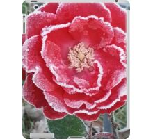 Red Rose - Icy Pedals iPad Case/Skin