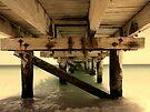 The Pier 2 by Richard Owen