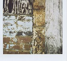 Polaroid by kaylarenee