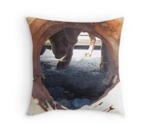 I really want that rock!!! Throw Pillow