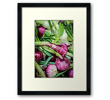 Farmers Market Red Onions Framed Print