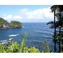 Hawaiian Ocean View Photographic Print