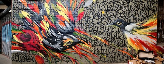 Firebirds by Chris Allen