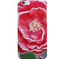 Red Rose - Icy Pedals iPhone Case/Skin