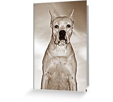 Old Man Dogo Greeting Card