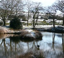 jack frost by oakes deary