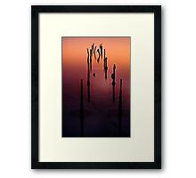 Broken Pier Framed Print
