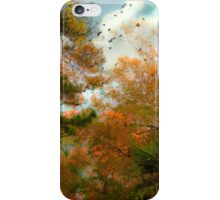 A Song of Many Colors iPhone Case/Skin